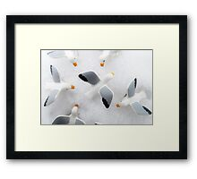 Birds typically ruin everything. Framed Print