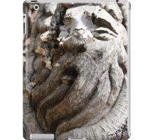 Tree Spirit iPad Case/Skin