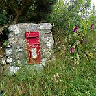 Old Forgotten Post Box by hootonles