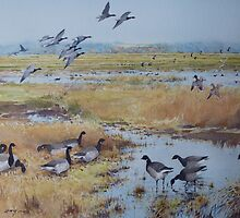 Brent Geese, Cley Marshes by briancday