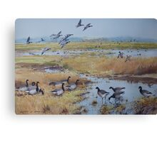 Brent Geese, Cley Marshes Canvas Print