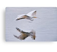 Great White Egret with Nesting Materials Canvas Print