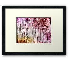 Snow Twigs Framed Print