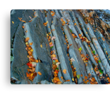 Leaves On the Livermore Overthrust Canvas Print