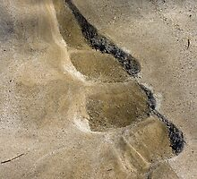 Trails in the Sand by Otto Danby II