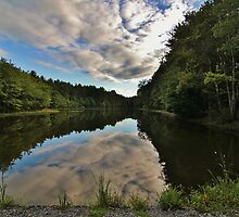 Pickerel Pond Summer Evening by Tim Holmes