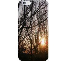 Sun Through Fence iPhone Case/Skin