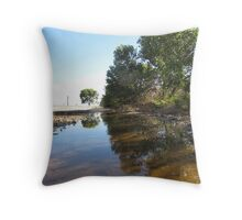 Lake on the Driveway. 'Arilka' Mt. Pleasant. Sth. Aust. Throw Pillow