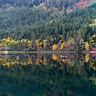 Silver Lake Fall Panorama by Michael Russell