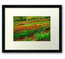 Forest river Framed Print