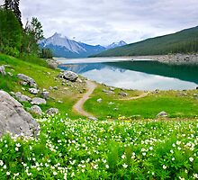 Mountain lake in Jasper National Park, Canada by Elena Elisseeva