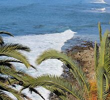 Palm Trees and Ocean by Murad Abel