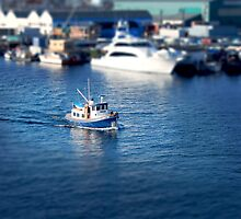 Mini Boats 5 - Tilt Shift by Scott Heffernan