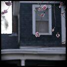 Blossoms w/house by Lynn Starner