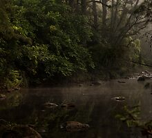 Kangaroo Valley - Peacefull Creek view 02 by Timothy Kenyon