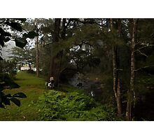 Kangaroo Valley - Peacefull Creek View 03 Photographic Print