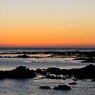 Morro Bay Sunset by Travis McLaren