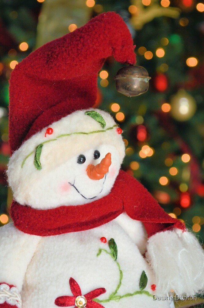 Frosty Christmas 3 by ©Dawne M. Dunton