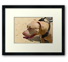 Perfect Pit in Profile Framed Print