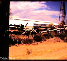 Barb Wire Fence by JamieYoungPhoto