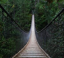The Lynn Canyon Suspension Bridge by Michael Russell