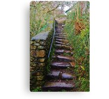 Steps to the Road Canvas Print