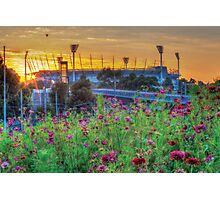 Field of Dreams - Melbourne Cricket Ground (MCG) Photographic Print