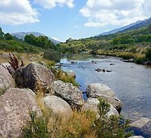 Thredo River Afternoon by Harry Oldmeadow