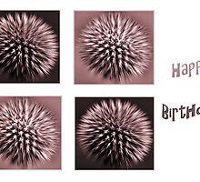 Echinops - Birthday Card by Karosh