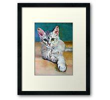 Cat 1 Framed Print