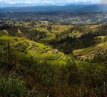 View and Inca Ruins On Cojitambo In Ecuador by Al Bourassa