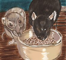 Rats and bowl. by pepsirat