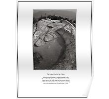 The Lone Chief of the Valley Limited Edition Print Poster