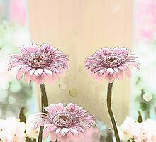 Pink Gerbera Dasies still life by walstraasart