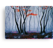 Early Morning Walk In The Woods Canvas Print