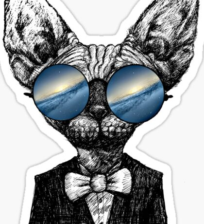 Galaxy Cat Sphynx Sunglass  Sticker