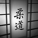 Judo - Black and White 02 by soniei