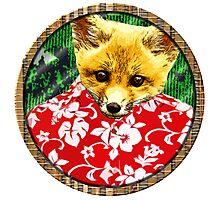 Hawaiian Fox Photographic Print