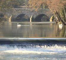 """ Silent Bridge, Quiet Reflection "" by Richard Couchman"