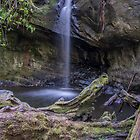 Semperverins Falls, Big Basin Redwoods State Park by James Watkins