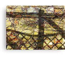 Lattice And Shadows Canvas Print