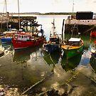 Irish dock by bposs98