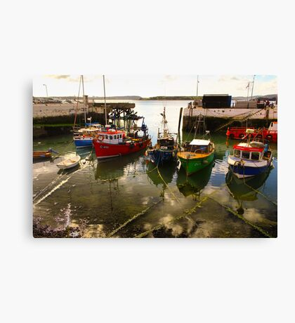 Irish dock Canvas Print