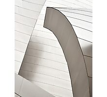 Disney Concert Hall Architecture II Photographic Print