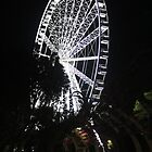 Brisbane Wheel by gaylene