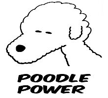 Poodle Power Photographic Print