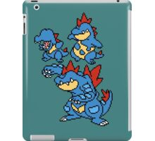 Totodile, Croconaw and Feraligatr iPad Case/Skin