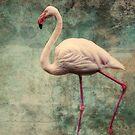 pink flamingo by lucyliu