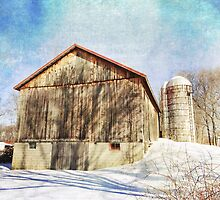 Country Life in the Winter by vigor