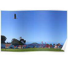 Blue Heron Blue Sky Crissy Field  Poster